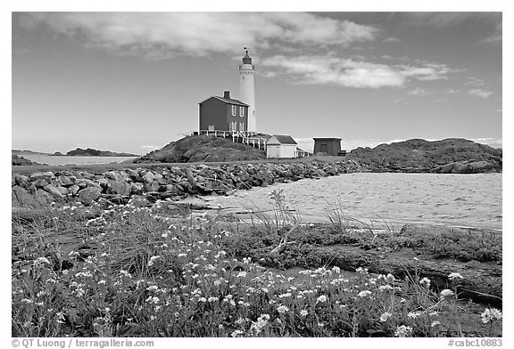 Flowers and Fisgard Lighthouse. Victoria, British Columbia, Canada (black and white)