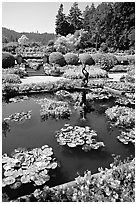 Pond in Italian Garden. Butchart Gardens, Victoria, British Columbia, Canada (black and white)