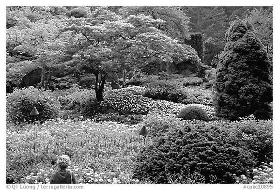 Tourist looking at flowers and trees in the Sunken Garden. Butchart Gardens, Victoria, British Columbia, Canada (black and white)