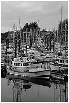 Pictures of Commercial Fishing