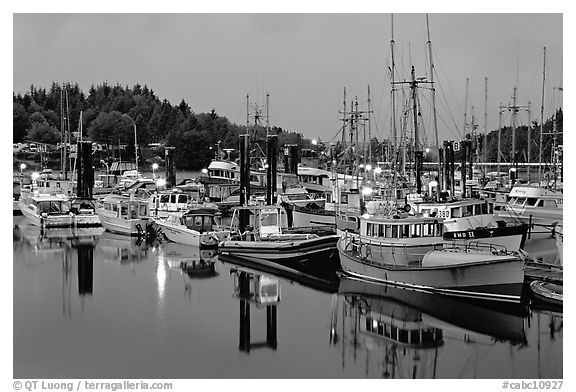 Commercial fishing fleet at dawn, Uclulet. Vancouver Island, British Columbia, Canada (black and white)