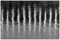 Column reflections. Victoria, British Columbia, Canada ( black and white)