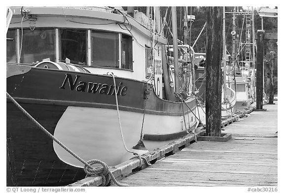 Commercial fishing boats, Uclulet. Vancouver Island, British Columbia, Canada (black and white)