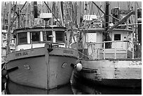 Fishing fleet, Uclulet. Vancouver Island, British Columbia, Canada (black and white)