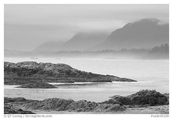 Ocean and coastal range. Pacific Rim National Park, Vancouver Island, British Columbia, Canada (black and white)
