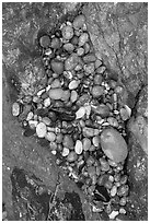 Pebbles and rock, South Beach. Pacific Rim National Park, Vancouver Island, British Columbia, Canada ( black and white)