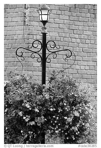Flowers, street lamp, brick wall. Victoria, British Columbia, Canada (black and white)