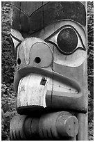 Totem pole detail, Thunderbird Park. Victoria, British Columbia, Canada ( black and white)