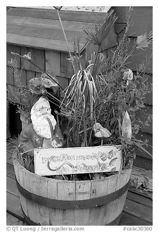 Whimsical basket with motto on houseboat. Victoria, British Columbia, Canada (black and white)