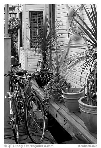 Bicycles, potted plants, and houseboat. Victoria, British Columbia, Canada (black and white)