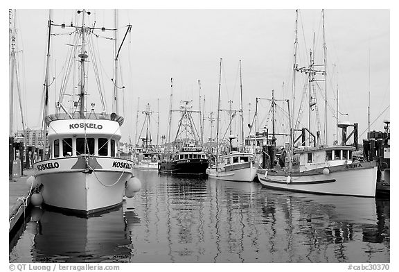 Commercial fishing boats, Upper Harbor. Victoria, British Columbia, Canada (black and white)