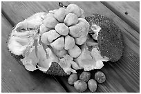 Jack Fruit. Vancouver, British Columbia, Canada ( black and white)