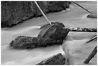 Boulders and fallen trees in silt-colored Tokkum Creek. Kootenay National Park, Canadian Rockies, British Columbia, Canada (black and white)
