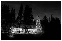Lit Christmas trees, cabin, and forest at night. Kootenay National Park, Canadian Rockies, British Columbia, Canada (black and white)