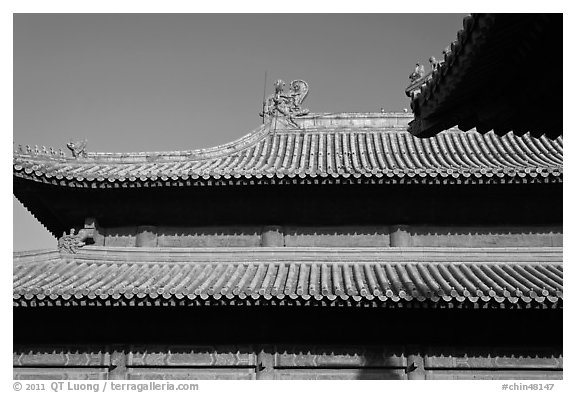 Roof detail, Forbidden City. Beijing, China (black and white)