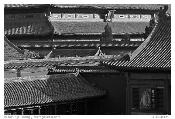 Rooftops details, Forbidden City. Beijing, China (black and white)