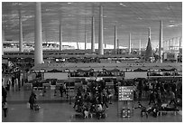 Some of the 300 check in counters, International Airport. Beijing, China ( black and white)
