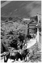 Village street leading to the market. Shaping, Yunnan, China ( black and white)