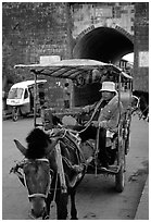 Horse carriage next to the North gate. Dali, Yunnan, China ( black and white)