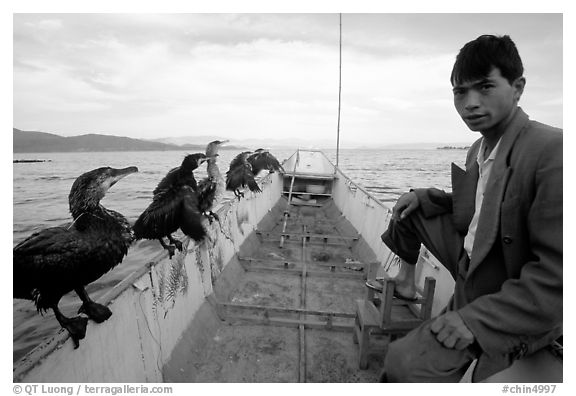 Fisherman and cormorant fishing birds. Dali, Yunnan, China (black and white)