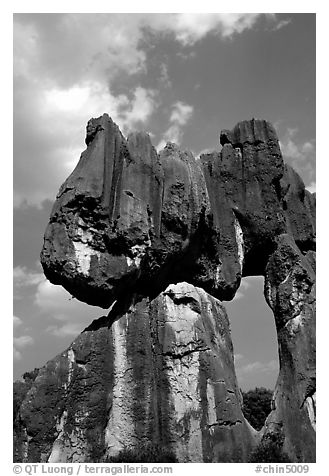 Opening in a limestone formation of the Stone Forest. Shilin, Yunnan, China (black and white)