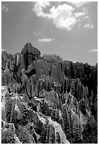 Maze of grey limestone pinnacles and peaks of the Stone Forst. Shilin, Yunnan, China (black and white)