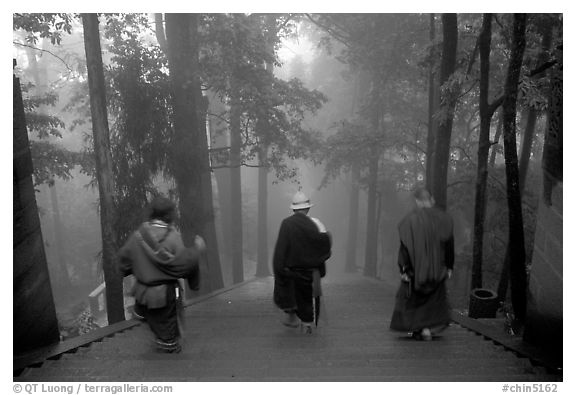Pilgrims descend a staircase in the fog beneath Wannian Si. Emei Shan, Sichuan, China (black and white)