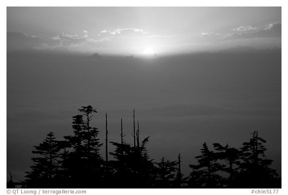 Sunset over a sea of clouds. Emei Shan, Sichuan, China (black and white)