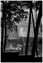 Bailongdong temple seen through trees. Emei Shan, Sichuan, China (black and white)