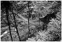Suspension bridge between Qingyin and Hongchunping. Emei Shan, Sichuan, China (black and white)