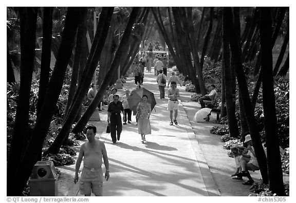 Walking to work and for exercie in a tree-lined alley of Liuha Park. Guangzhou, Guangdong, China (black and white)