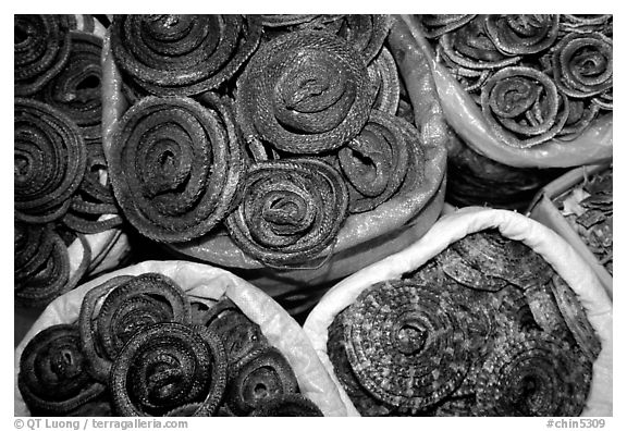 Coiled dried snakes for sale at the Qingping market. Guangzhou, Guangdong, China (black and white)