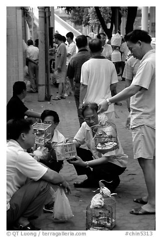 Peddling birds on the street. Guangzhou, Guangdong, China (black and white)