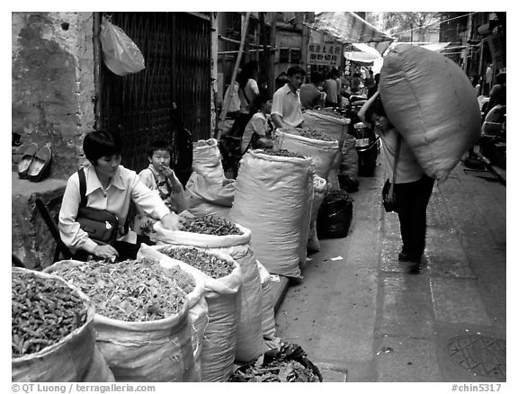 Large bags of dried food items. Guangzhou, Guangdong, China (black and white)