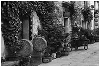 Houses iwth ivy. Hongcun Village, Anhui, China ( black and white)