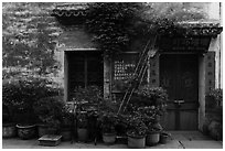Facade with potted plants. Hongcun Village, Anhui, China ( black and white)