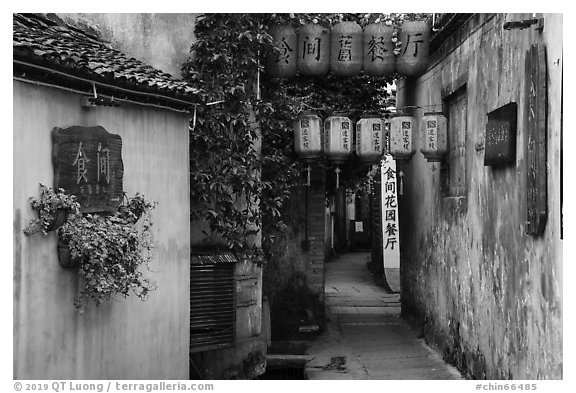 Alley with lanterns and plants. Hongcun Village, Anhui, China (black and white)