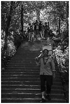 Sedan chair carriers on steep staircase. Huangshan Mountain, China ( black and white)