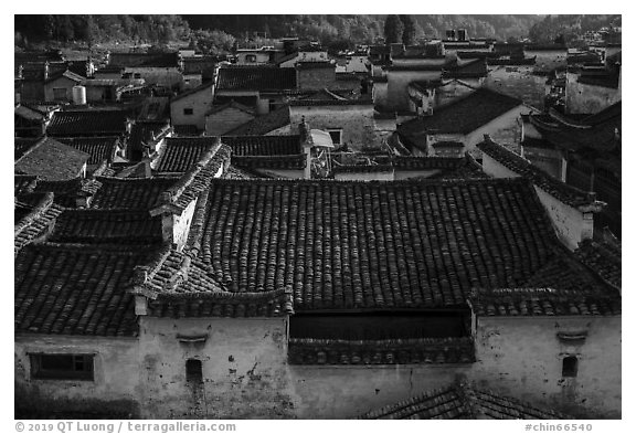Tile rooftops. Xidi Village, Anhui, China (black and white)