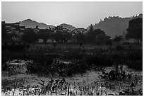 Pond and village at sunrise. Xidi Village, Anhui, China ( black and white)