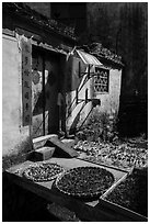 Harvest drying in front of village house. Xidi Village, Anhui, China ( black and white)