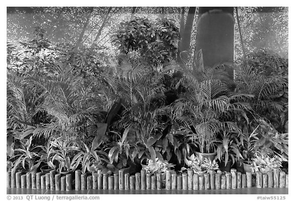 Plants and forest mural photograph, Taoyuan Airport. Taiwan (black and white)