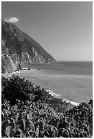 Sea cliffs and Pacific Ocean. Taroko National Park, Taiwan ( black and white)