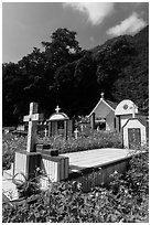 Cemetery and lush hills, Chongde. Taiwan ( black and white)