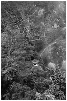 Trees, temple, and cliffs, Taroko Gorge. Taroko National Park, Taiwan ( black and white)