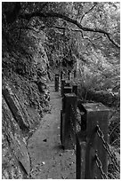 Cliffside trail, Taroko Gorge. Taroko National Park, Taiwan ( black and white)