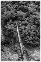 Hikers cross suspension bridge. Taroko National Park, Taiwan (black and white)
