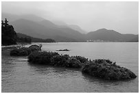 Floating gardens and misty mountains. Sun Moon Lake, Taiwan ( black and white)