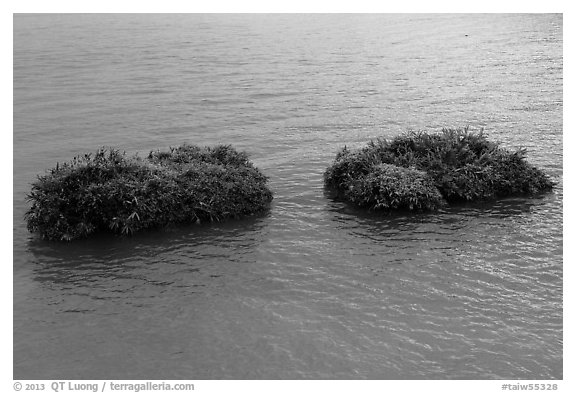 Floating rafts for cultivation. Sun Moon Lake, Taiwan (black and white)