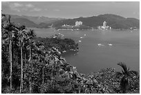 Palm trees, lake, and Sun Moon Lake Village. Sun Moon Lake, Taiwan (black and white)